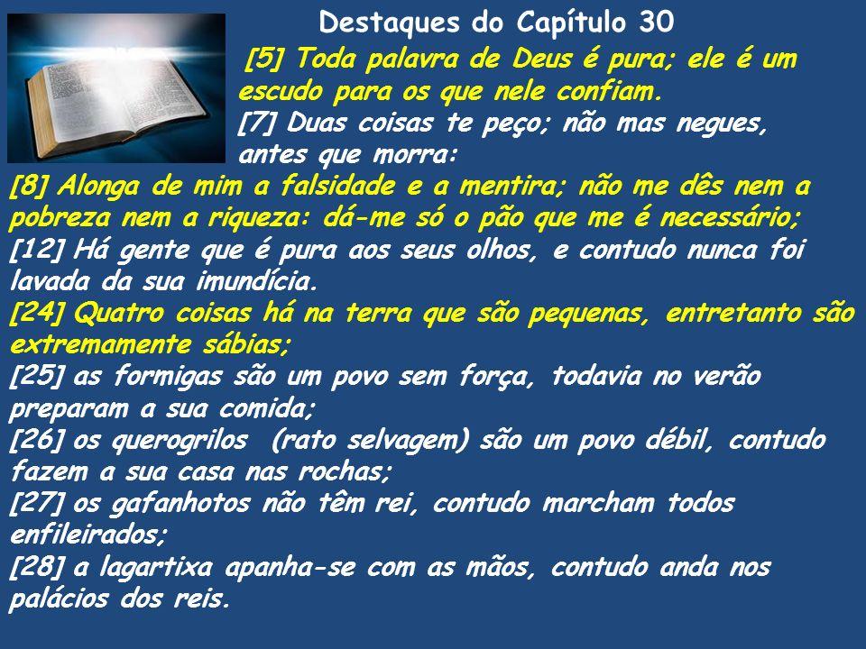 Pv [5] Toda palavra de Deus é pura; ele é um